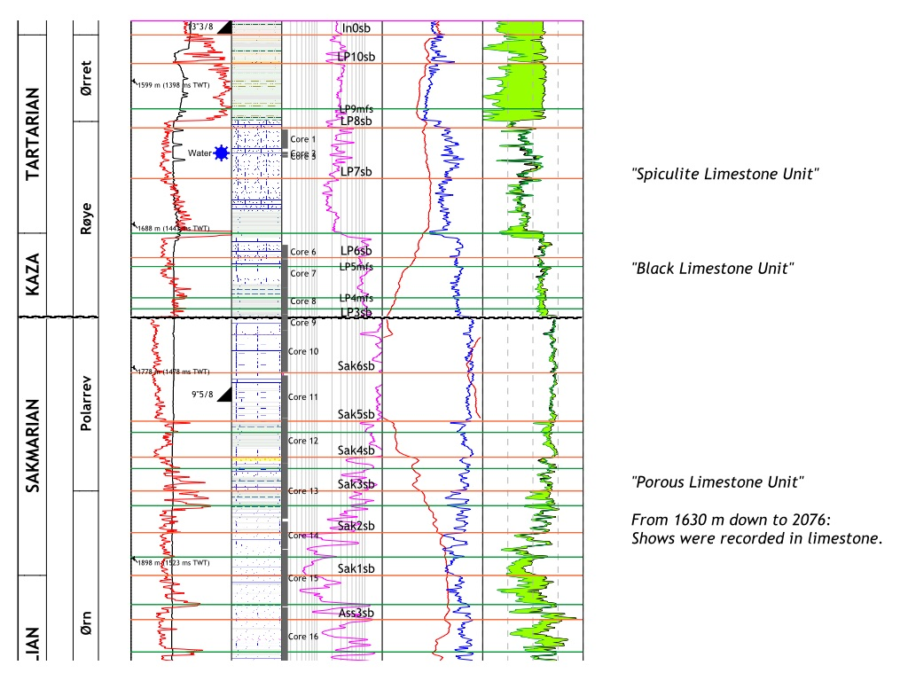 Extract of a stratigraphic log of the Paleozoic interval